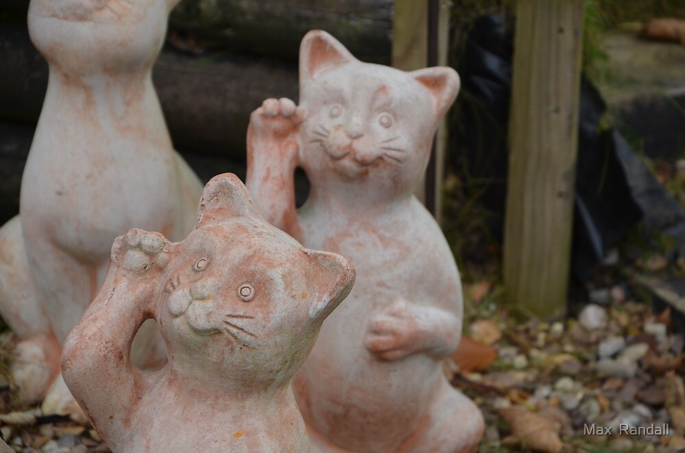 Cat statue in garden centre by MAX RANDALL