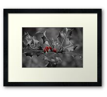 Christmas Holly and Berries Framed Print