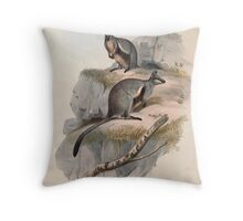 A monograph of the Macropodidæ or family of kangaroos John Gould 1842 024 Petrogale Lateralis Throw Pillow
