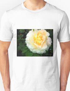 Memories of Summer T-Shirt