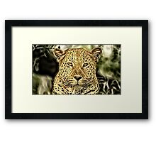 Wild nature - panther Framed Print