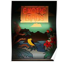 Exotic Birds Poster