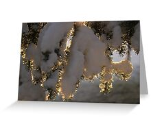 Snow at Sunrise Greeting Card