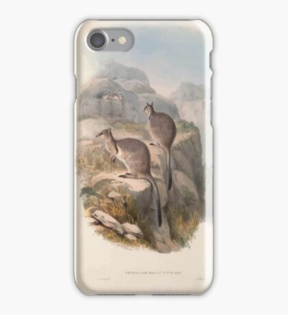 A monograph of the Macropodidæ or family of kangaroos John Gould 1842 006 Oetrogale Bracuydtis iPhone Case/Skin