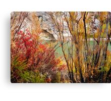 Brush of Color Canvas Print