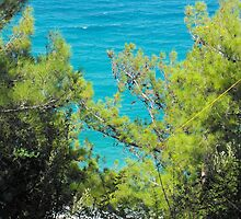 Greek Island Beach Samos 5 #photography by SlavicaB