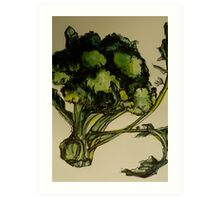 Broccoli. Pen and wash on Arches paper. Elizabeth Moore Golding Ⓒ2012 Art Print