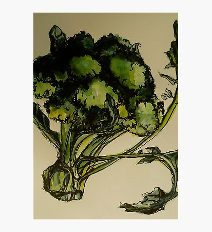 Broccoli. Pen and wash on Arches paper. Elizabeth Moore Golding Ⓒ2012 Photographic Print