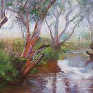 Moorabool Reflections by Lynda Robinson