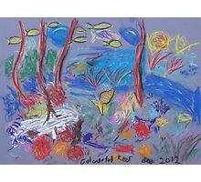 Belinda Peel 'Colourful Reef' Photographic Print