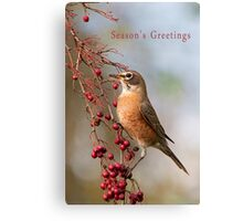 Robin and Red Berries Canvas Print
