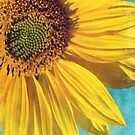 Pure sunshine by SylviaCook
