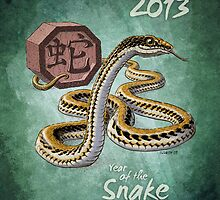 2013: The Year of the Snake by Stephanie Smith