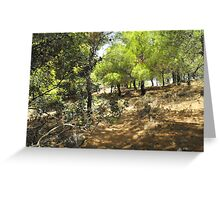 Beautiful Greek Island Forest Greeting Card