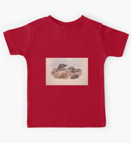 A monograph of the Macropodidæ or family of kangaroos John Gould 1842 029 Bettongia Cuniculus Kids Tee