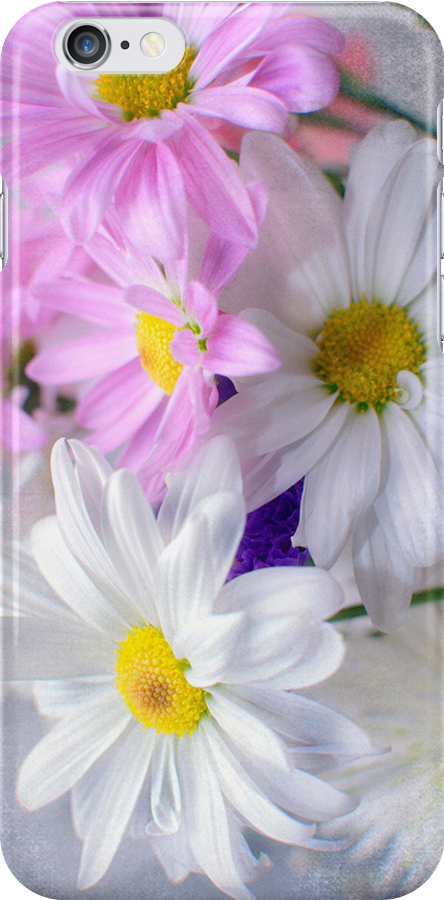 Spring - iPhone Case by Kathy Nairn