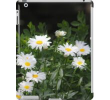Mini Daisies - Cases iPad Case/Skin