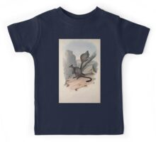 A monograph of the Macropodidæ or family of kangaroos John Gould 1842 023 Petrogale Penicillata Kids Tee