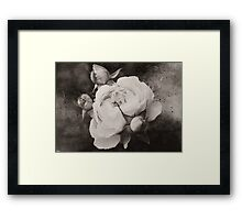 Mother and Babies Sepia Framed Print