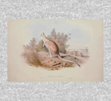 A monograph of the Macropodidæ or family of kangaroos John Gould 1842 004 Macropus Unguifer One Piece - Long Sleeve