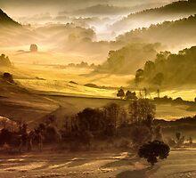 Crete Dorate by Wonderful Tuscany Landscapes