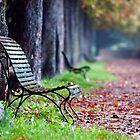 Autumn by Wonderful Tuscany Landscapes