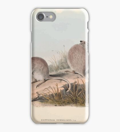 A monograph of the Macropodidæ or family of kangaroos John Gould 1842 013 Bettongia Rufescens iPhone Case/Skin