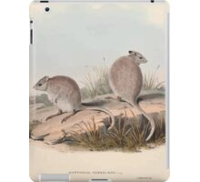 A monograph of the Macropodidæ or family of kangaroos John Gould 1842 013 Bettongia Rufescens iPad Case/Skin