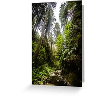 Giants Stand, Giants Roamed Greeting Card