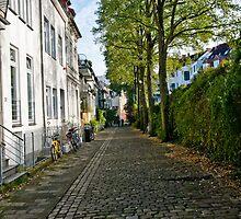 Street - Viertel  by A.David Holloway