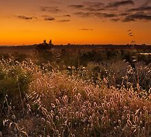 Sunrise at Herdsman by Jennie  Stock