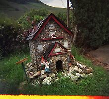 Holga gnome home by redcow