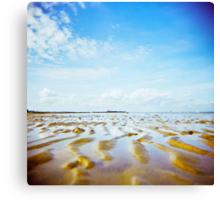 Holga sandy Canvas Print