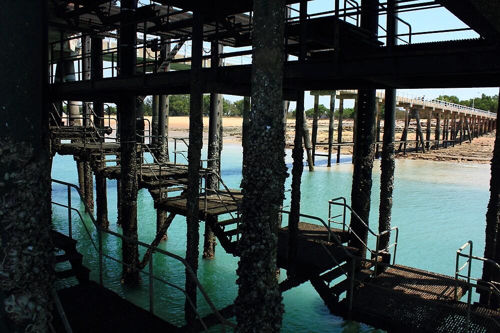 Darwin Harbour Jetty by Carol James
