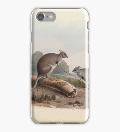 A monograph of the Macropodidæ or family of kangaroos John Gould 1842 012 Lagorchestes Lepoides iPhone Case/Skin