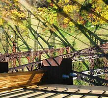 Kinzua Trestle 4 ~ Straight Down by artwhiz47