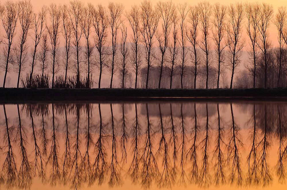 Reflections by Wonderful Tuscany Landscapes