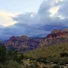 Red Rock Canyon 3 by Tracy Friesen