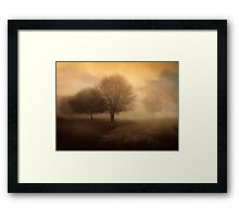Undiscovered Framed Print