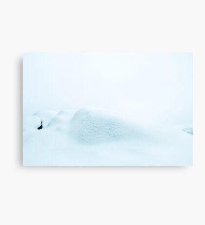 Snø Metal Print