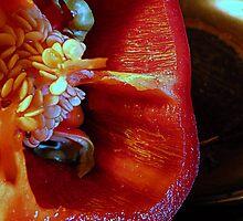 Juicy Red by trueblvr