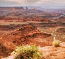 Beautiful Dead Horse Point by Vincent James