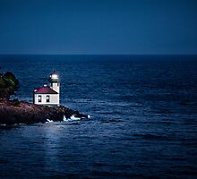 Whale Watch Point Lighthouse by vividpeach