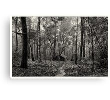 Lonely hut in deep forest Canvas Print