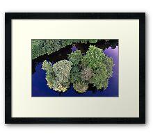 Tree Island at Dusk Framed Print