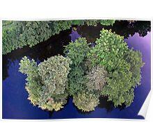 Tree Island at Dusk Poster