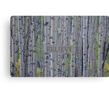 Believe - Aspens  Canvas Print