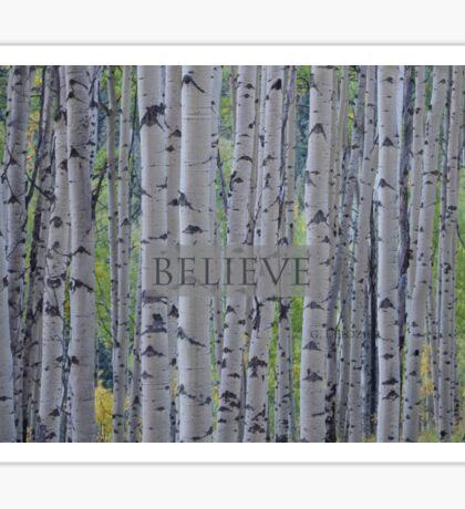 Believe - Aspens  Sticker