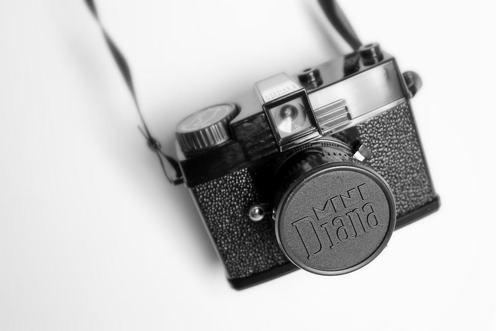 Diana Mini Camera by Victoria Lincoln