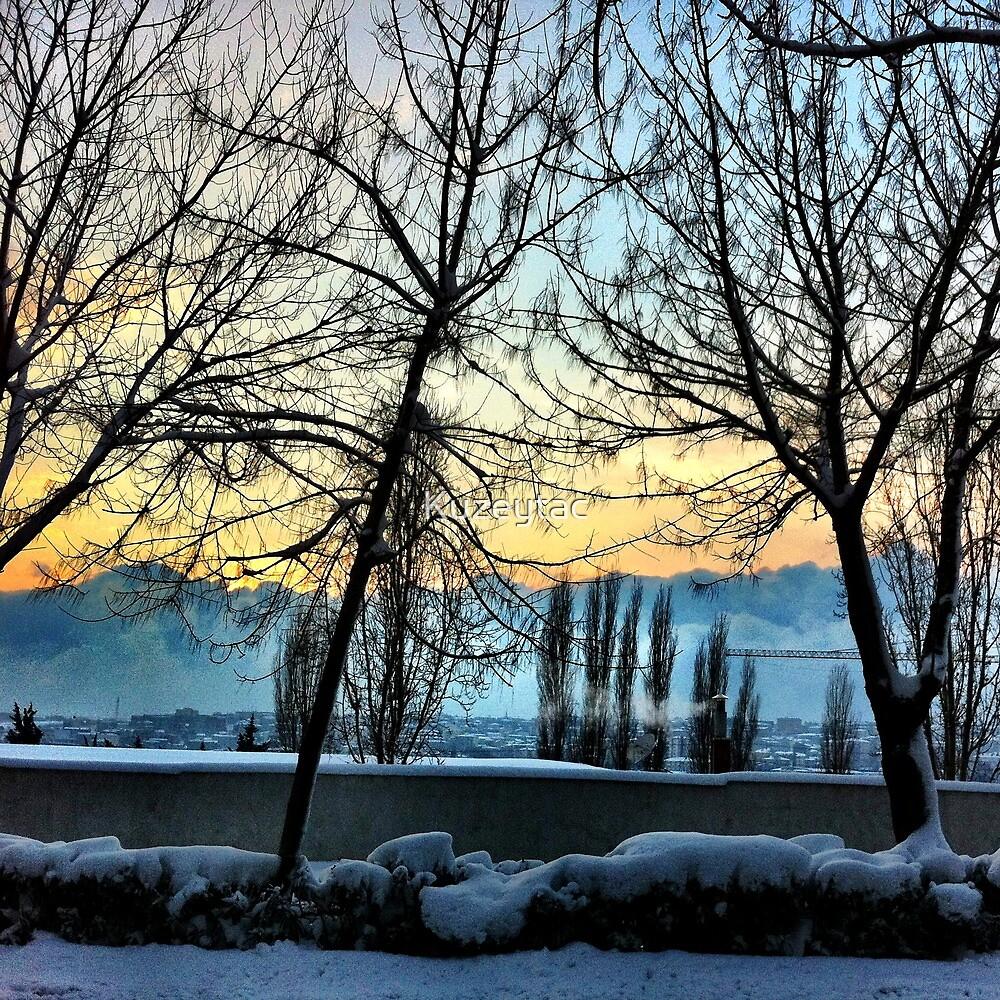 Istanbul Blizzard by Kuzeytac